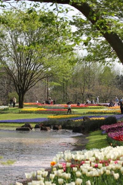 昭和記念公園 ブログサイズ0216