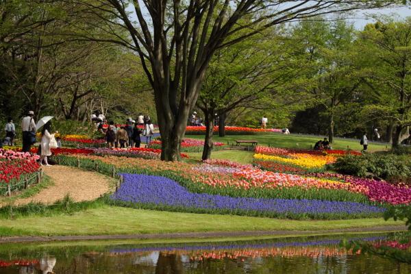 昭和記念公園 ブログサイズ0215