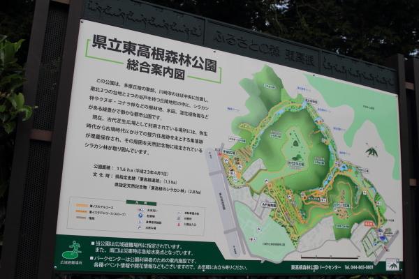 公園はしご0084