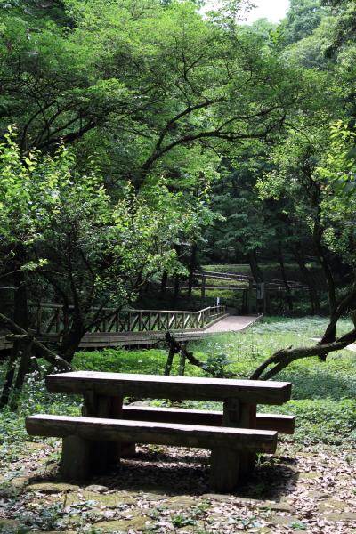 公園はしご0052