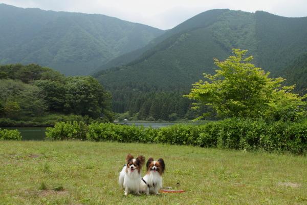 田貫湖 ブログ0009