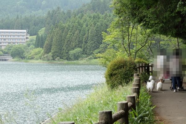 田貫湖 ブログ0018