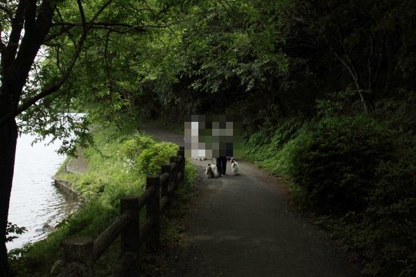 田貫湖 ブログ0014
