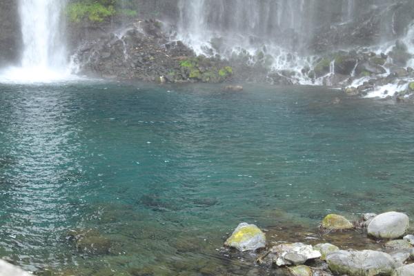 田貫湖 ブログ0124