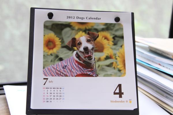 犬ねくり ブログサイズ0018