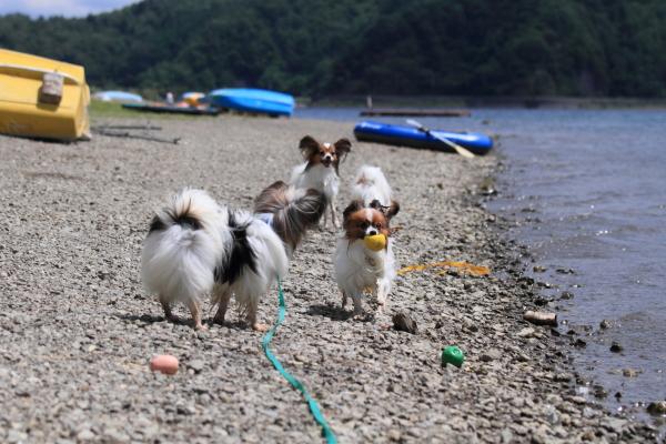 2012_08_22 西湖 ブログサイズ0004