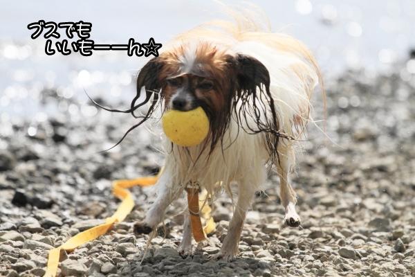 2012_08_22 西湖 ブログサイズ0054