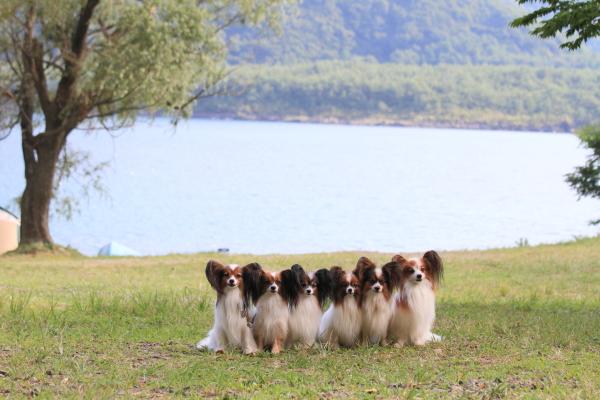 2012_08_22 西湖 ブログサイズ0111