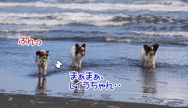 2012_09_18 海 ブログ2012_09_18 海遊び 九十九里0113