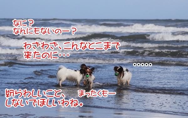 2012_09_18 海 ブログ2012_09_18 海遊び 九十九里0112