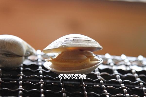 2012_09_18 海 ブログ2012_09_18 海遊び 九十九里0047