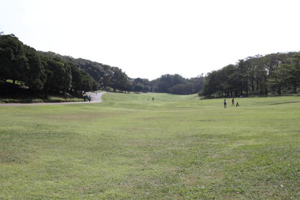 2012_10_02 根岸森林公園 ブログ0009