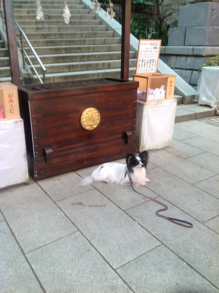 2012_10_16 江の島IMG_0235