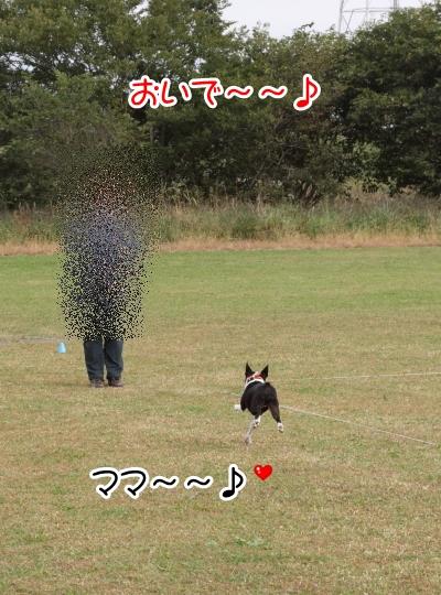 2012_10_25 河川敷レッスン0012