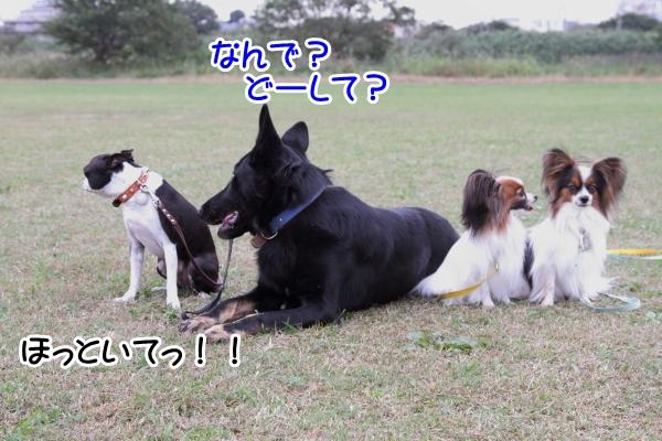 2012_10_25 河川敷レッスン0055