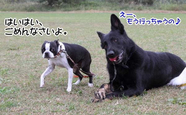 2012_10_25 河川敷レッスン0062