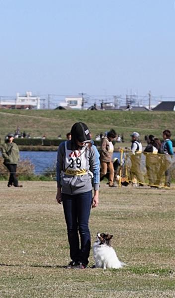 2012_11_04 秋季訓練競技会秋季訓練競技会 アルバムサイズ0112