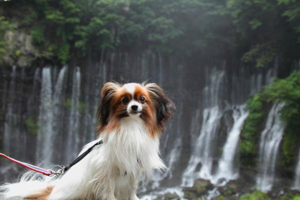 田貫湖 ブログ0107