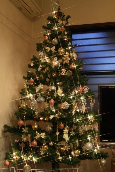 2012111_27 きらきらクリスマスツリーきらきら クリスマスツリー0002