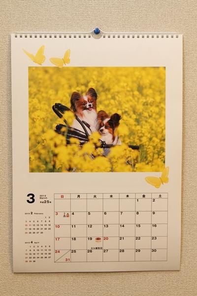 ワルっこカレンダー 20130003