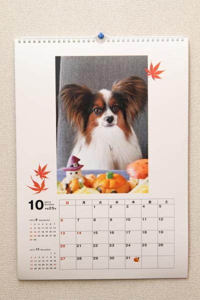ワルっこカレンダー 20130デューク
