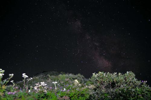 20120723sankoho3368.jpg