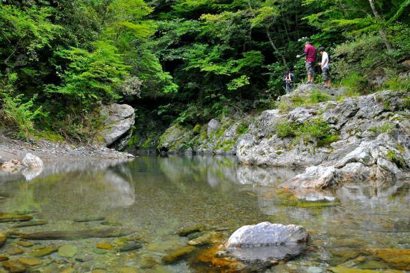 20120825mibuchi4899.jpg