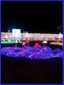 大阪城イルミ4