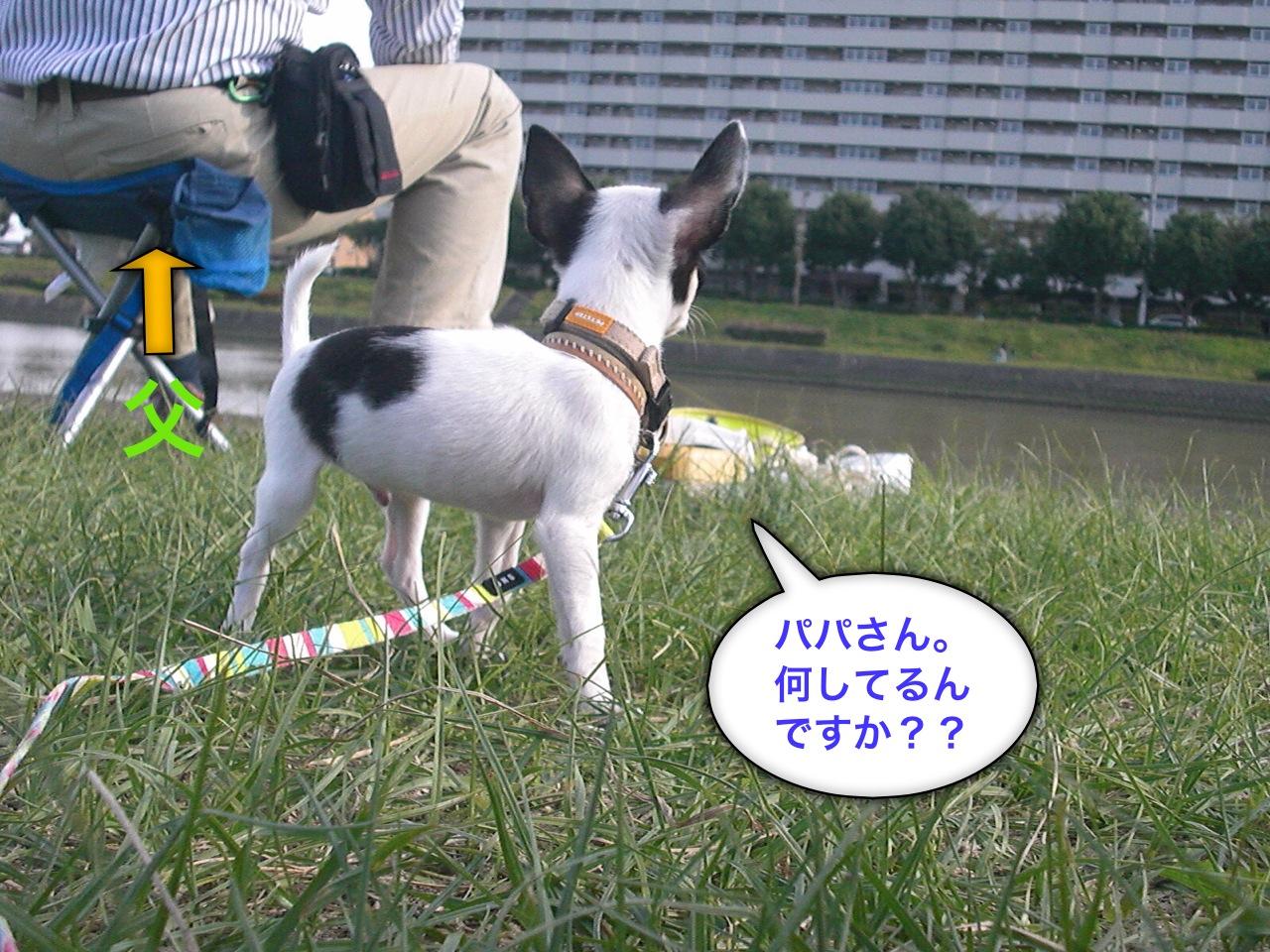 moblog_7f9212da.jpg