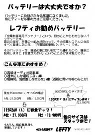 13_12.jpg