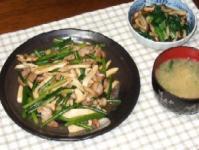 11/19 夕食 豚肉とニンニクの芽のオイスター炒め、しめじと小松菜の煮浸し、水菜とじゃがいものみそ汁