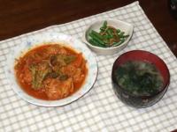 5/11 夕食 肉団子と野菜のトマト煮込み、いんげんの桜エビ炒め、じゃがいもとワカメの味噌汁