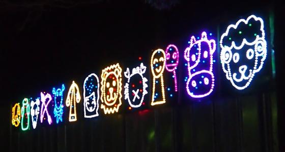 光の祭典2013-5