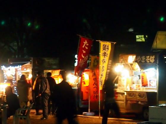 光の祭典2013-8