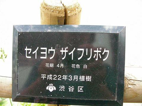 東京 036