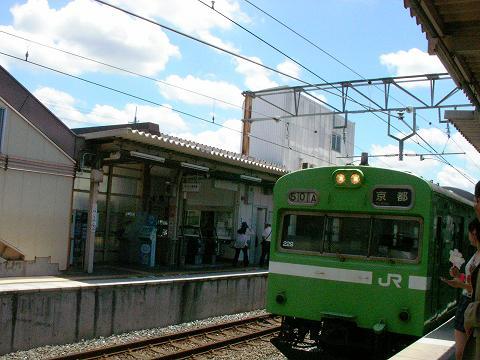たま木 004