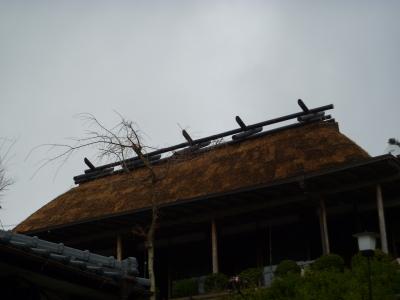屋根完成IMG0005