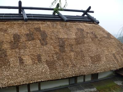 屋根完成IMG0002