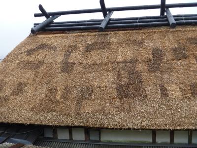 屋根完成IMG0001