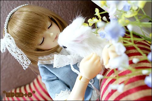 usaRD-Minato-6.jpg