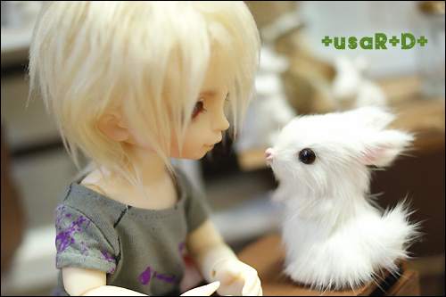 usaRD-Yuki-8.jpg