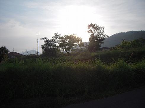 DSCN1257.jpg