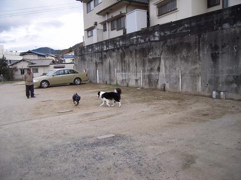DSCN9787_20111203221817.jpg