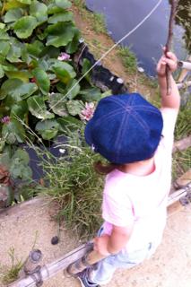 ザリガニ釣り2