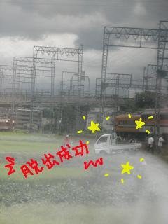 P9120381.jpg