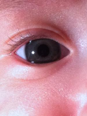 赤ちゃんの目の色 - アメリカで暮らす→改め→日本で暮らす