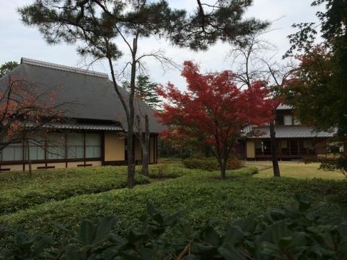 2014-11-12 古径邸