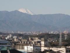 百合ヶ丘から眺めた富士山