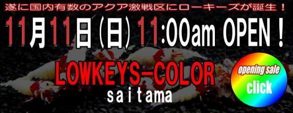 saitama041[1]_convert_20121111002802