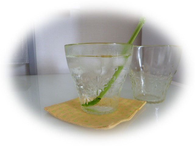 ガラスのコップ3